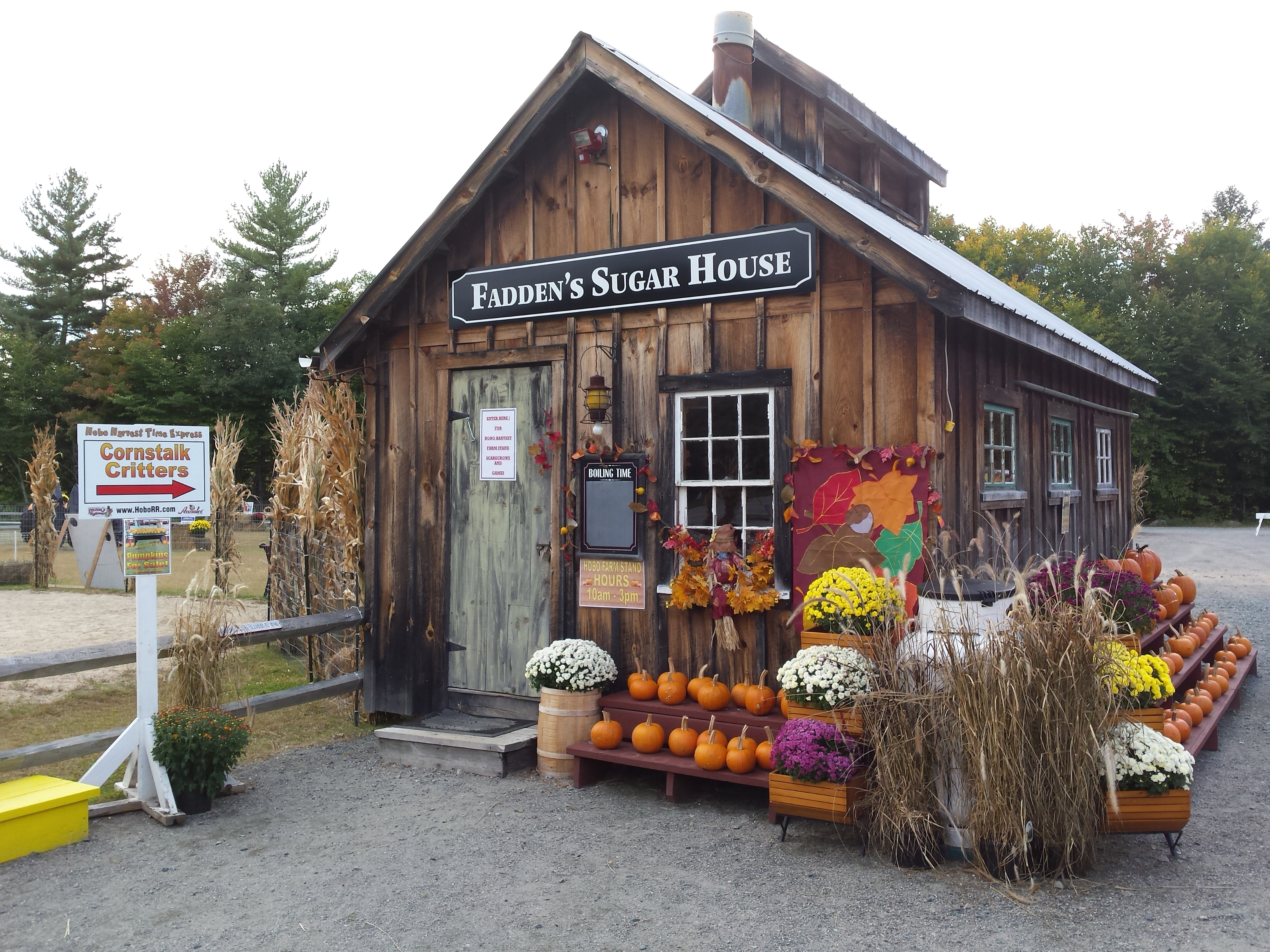 Hobo Harvest Time Express - New Hampshire's Classic Fall Foliage Experience! We operate daily from mid-September through mid-October. Be sure to check out our Hobo Farm Stand and our now-famous