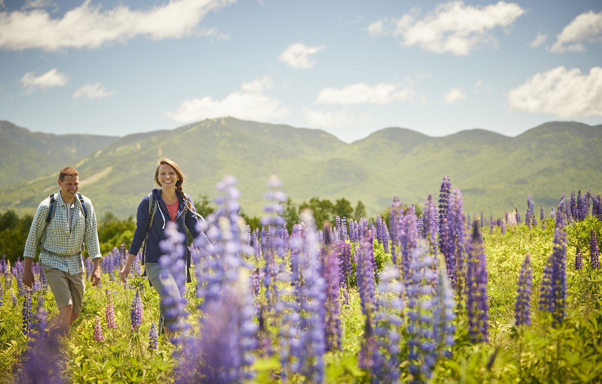A man and a woman walking through a field of lupine with mountains behind them