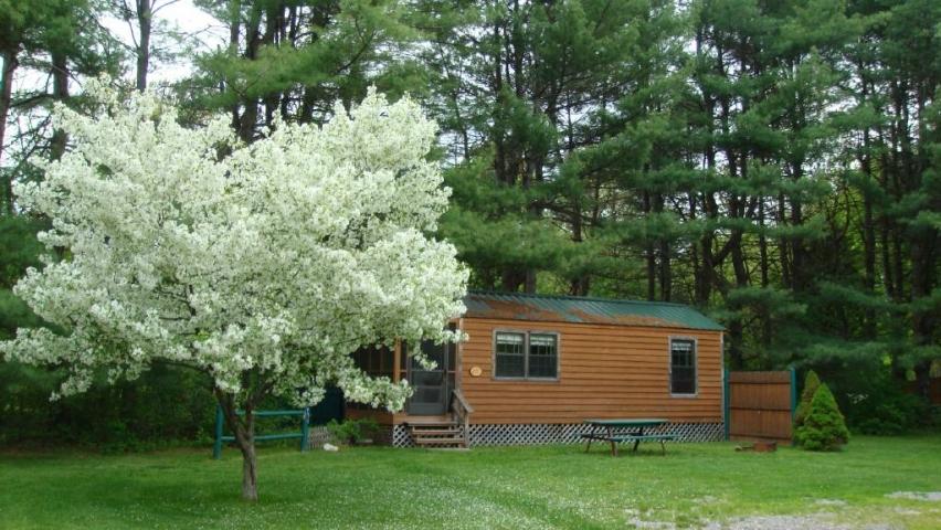 Visit NH : Silver Lake Park Campground & Cabins