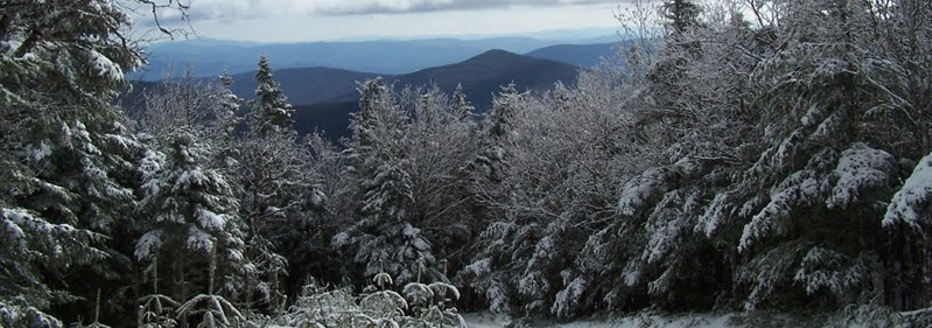 View from the summit of Mount Moosilauke with trees covered in snow on a sunny day
